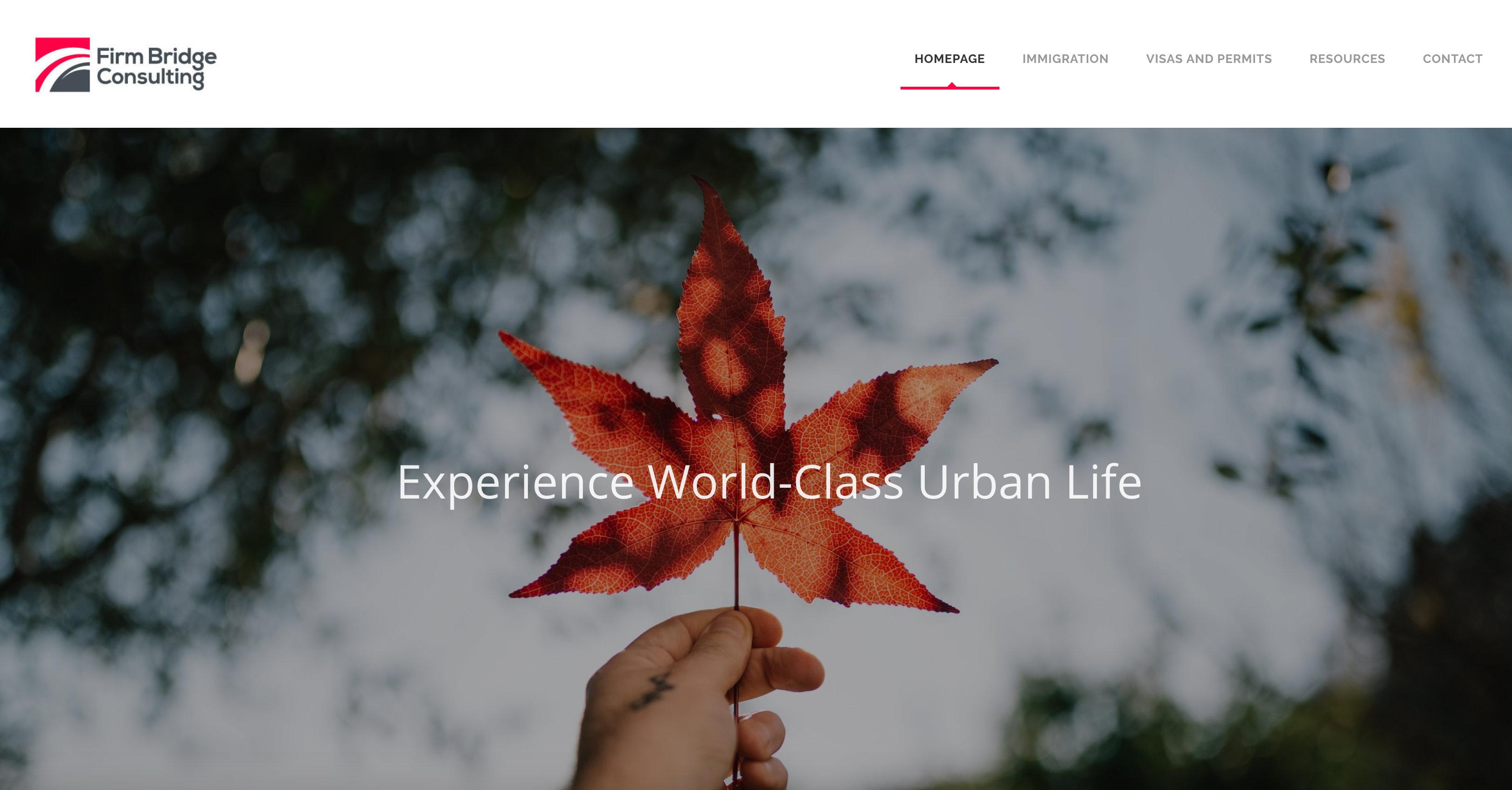 Immigration Services - Firm Bridge - Hilborn Digital Website Design